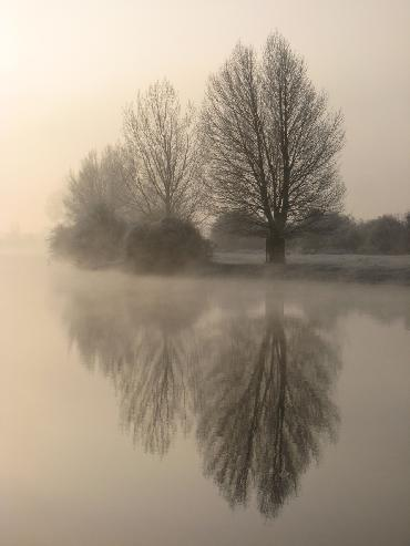 Port Meadow photo by Sarah Laurence