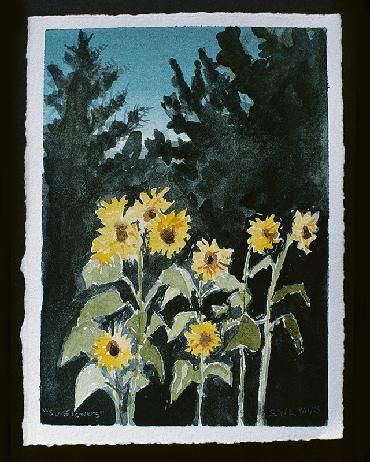 sunflower watercolor by Sarah Laurence