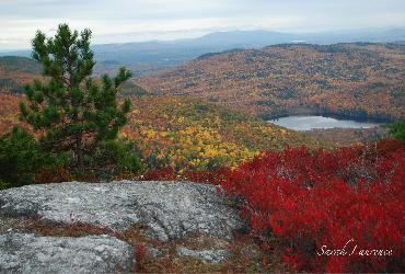White Mountain National Forest, fall foliage