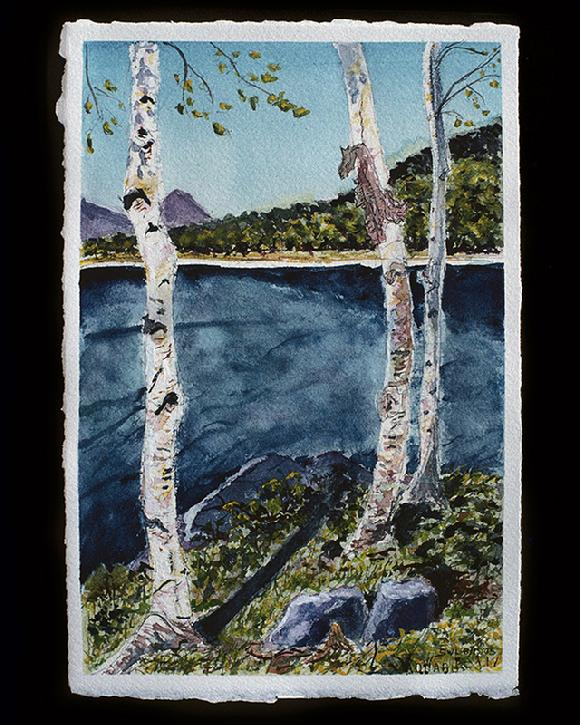 The Birches at Moosehead Lake watercolor by Sarah Laurence